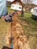 Klubowe ciągnięcie druta ;)_12